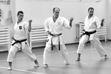 Первый международный учебно-аттестационный семинар по традиционному каратэ-до и тайфукан кобудо в городе Красноярске