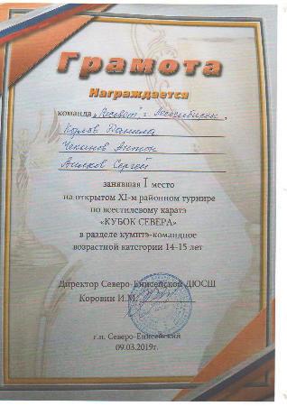 Открытый турнир по всестилевому каратэ «КУБОК СЕВЕРА»